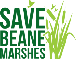 Save Beane Marshes